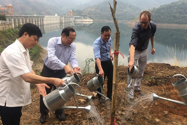 Thủy điện Sơn La trồng cây bảo vệ, phát triển nguồn sinh thủy