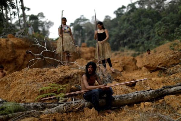 Tháng 4/2021: Diện tích rừng Amazon tại Brazil bị tàn phá tăng 43% so với cùng kỳ năm 2020