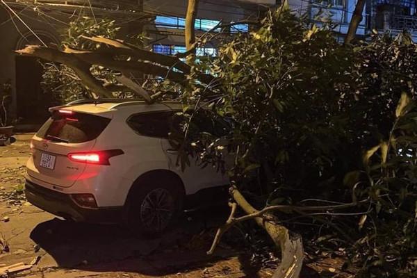 Lào Cai: Thiệt hại gần 8 tỷ đồng do mưa  lớn và dông lốc