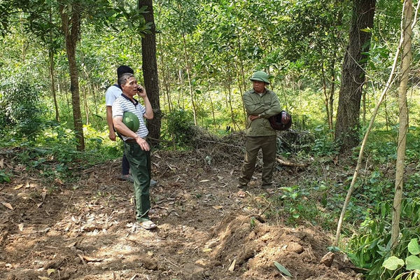 Thanh Hóa: Tăng cường các biện pháp phòng cháy, chữa cháy rừng