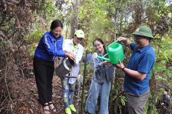 """Tuổi trẻ Yên Bái chung tay """"trồng 1 tỷ cây xanh"""""""