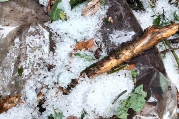 Mưa đá trắng xoá dội xuống huyện miền núi Nam Trà My (Quảng Nam)