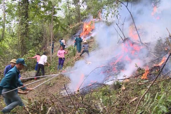 Nắng nóng gay gắt, hanh khô trên diện rộng, cần cấp bách về phòng, chữa cháy rừng