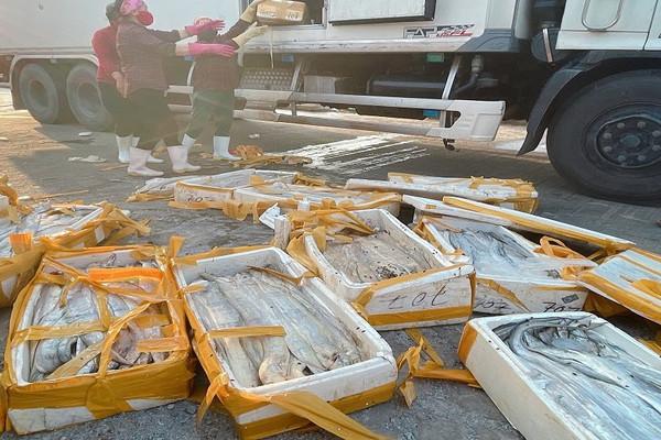 Hải sản không thể xuất khẩu nhiều doanh nghiệp tại Quảng Bình lao đao