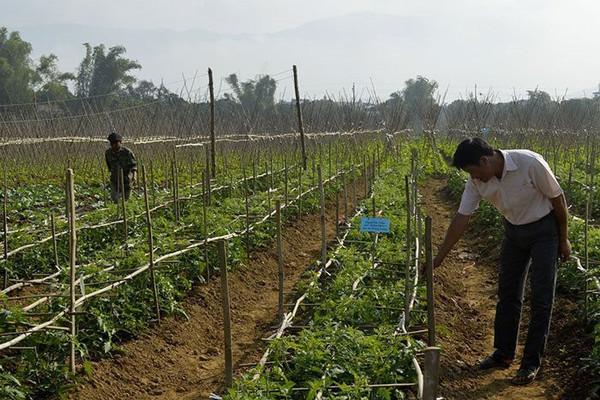 Điện Biên: Chủ động ứng phó biến đổi khí hậu