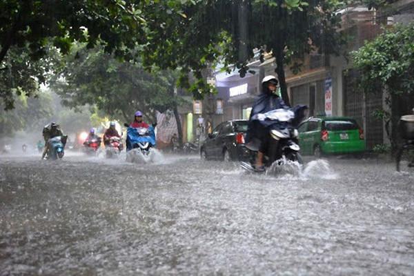 Chủ động ứng phó mưa lớn, lốc, sét và gió giật mạnh