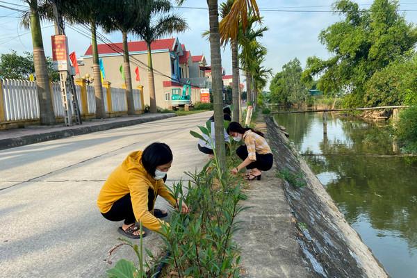 Mở rộng phong trào trồng cây xanh bảo vệ môi trường sinh thái