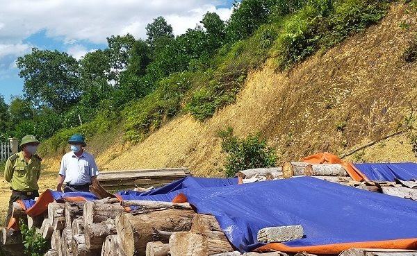 Thanh Hóa: 6 tháng đầu năm xử lý 182 vụ vi phạm pháp luật bảo vệ rừng
