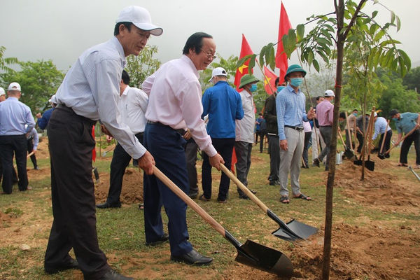 Nghệ An: Sẽ trồng thêm ít nhất 54 triệu cây xanh