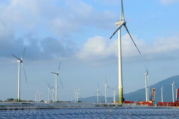 Nhiều tổ chức điện gió hàng đầu thế giới kêu gọi G20 'nghiêm túc' với vấn đề năng lượng tái tạo