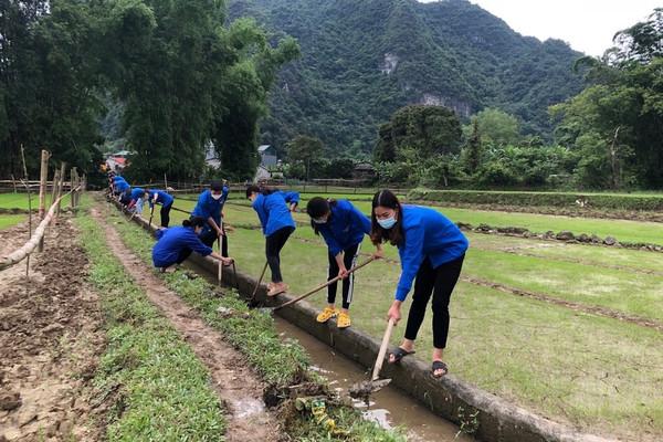 Hạ Lang (Cao Bằng): Thanh niên DTTS trồng mới hơn 24.800 cây xanh