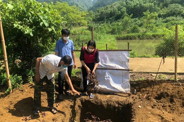 Phù Yên (Sơn La): Nâng cao tỷ lệ thu gom, xử lý rác thải