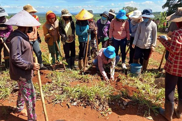 Gia Lai: Phụ nữ dân tộc thiểu số với nhiều hoạt động bảo vệ môi trường
