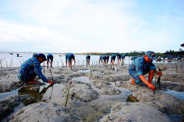 Bộ TN&MT công bố Báo cáo hiện trạng môi trường biển Quốc gia