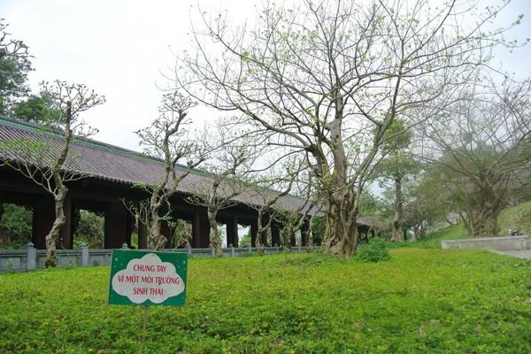 Ninh Bình: Đa dạng hoạt động bảo vệ môi trường tại chùa Bái Đính