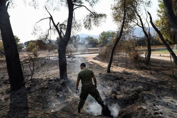 Hơn 500 vụ cháy rừng ở Hy Lạp, hàng nghìn người phải sơ tán