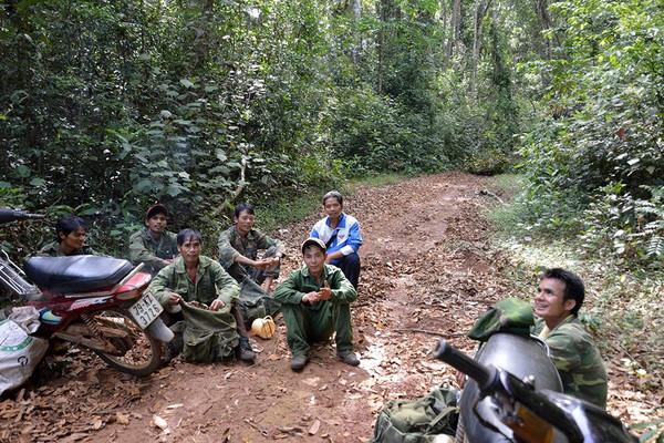 Đồng bào dân tộc thiểu số huyện Kông Chro bảo vệ rừng ứng phó biến đổi khí hậu