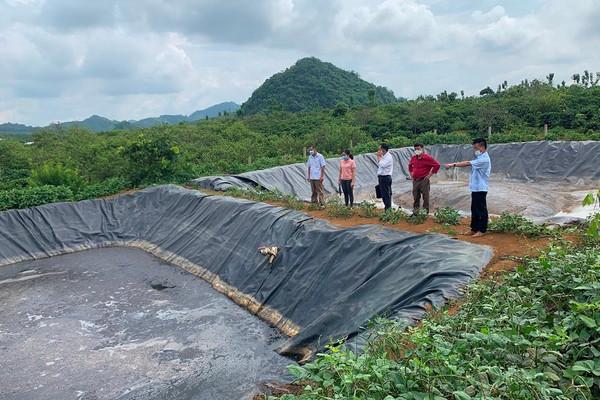 Mai Sơn (Sơn La): Tuyên truyền bảo vệ môi trường trong sơ chế cà phê