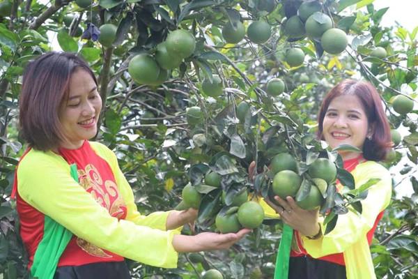 Hà Tĩnh: Huyện miền núi đạt chuẩn nông thôn mới được thưởng 10 tỷ đồng