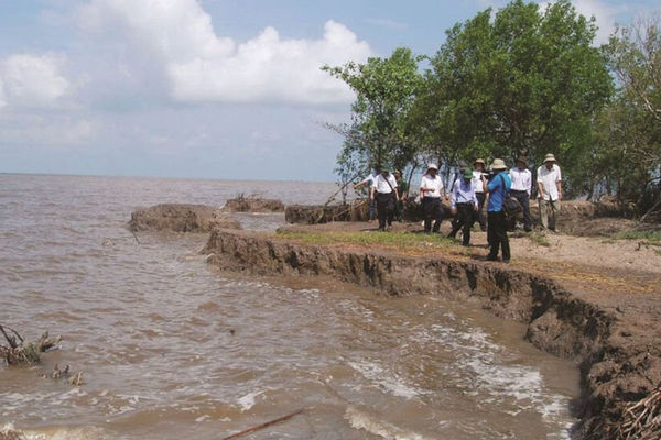 Việt Nam nỗ lực giảm phát thải nhà kính: Hướng đến mục tiêu thiên niên kỷ