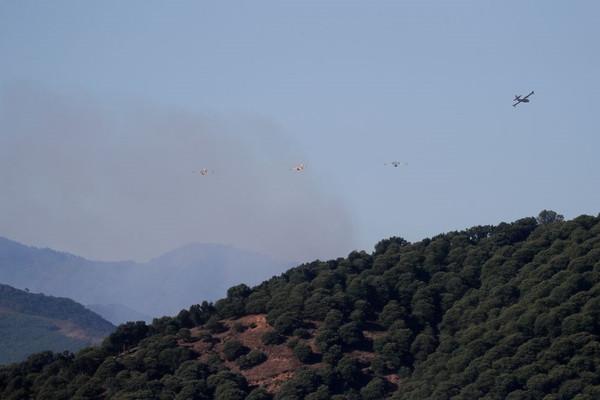 Hơn 1.000 người sơ tán do cháy rừng ở Tây Ban Nha