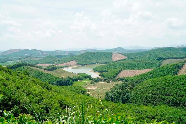 Thanh Hóa: Phê duyệt Phương án quản lý rừng bền vững giai đoạn 2021 - 2030 tại huyện miền núi Như Thanh