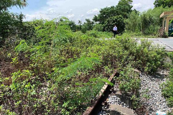 """Quảng Ninh: Tuyến đường sắt chuyên dụng """"đắp chiếu"""" nhiều năm, gây lãng phí hàng chục ha đất"""