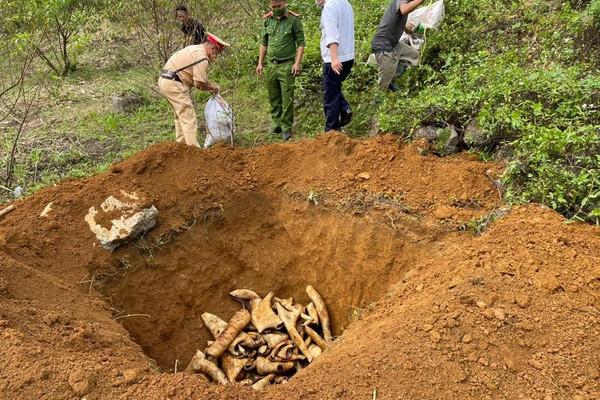 Sơn La: Thu giữ trên 1 tấn nội tạng động vật không rõ nguồn gốc