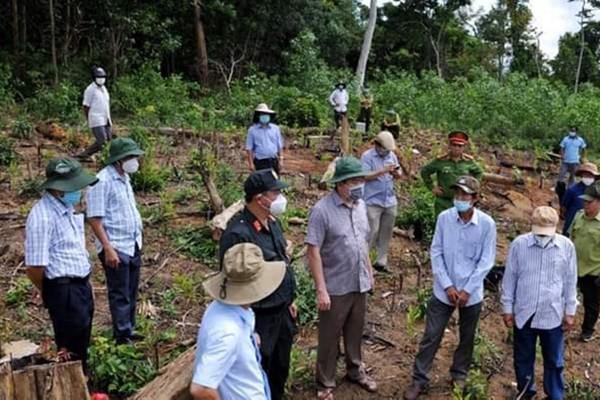 Phú Yên: Khởi tố 2 vụ phá rừng