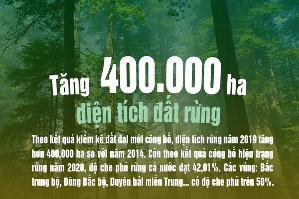 Infographic: Cả nước tăng 400.000 ha diện tích đất rừng so với năm 2014
