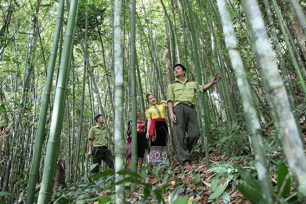 Nét đa dạng sinh học ở Khu bảo tồn thiên nhiên Pù Hoạt