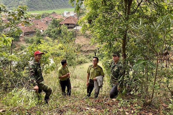 Huyện Điện Biên tăng cường công tác quản lý bảo vệ rừng