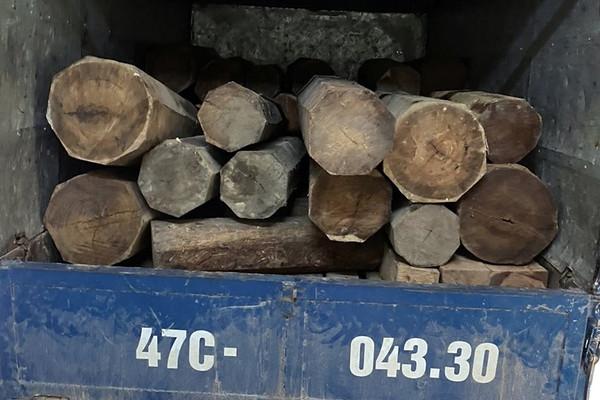Phát hiện xe tải chở đầy gỗ lim xẹt lậu