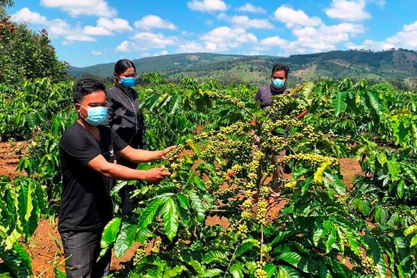 Ia Grai – Gia Lai: Hỗ trợ đất sản xuất giúp người DTTS ổn định cuộc sống