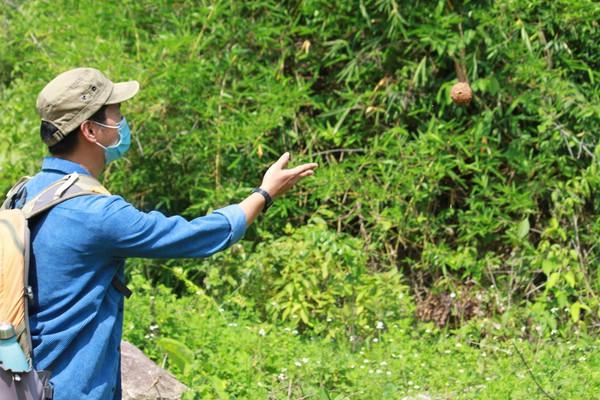Đắk Lắk: Gieo mầm xanh cho những vùng đất trống, đồi trọc