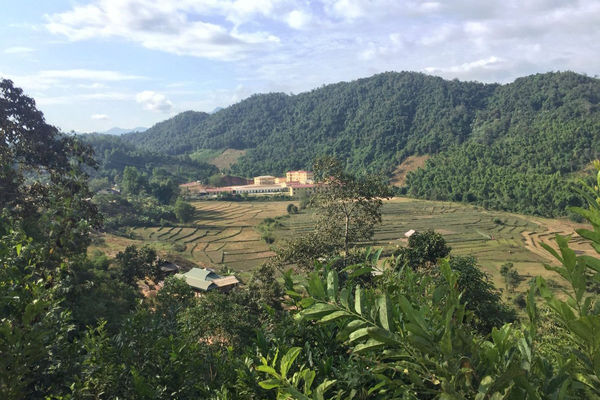 Điện Biên: Tăng cường vai trò của cộng đồng và chủ rừng trong bảo vệ rừng bền vững