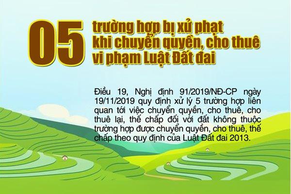 Infographic: 05 trường hợp bị xử phạt khi chuyển quyền, cho thuê vi phạm Luật Đất đai