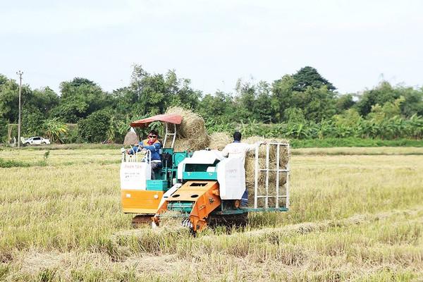Ninh Bình: Mô hình thu gom rơm rạ giảm thiểu ô nhiễm môi trường